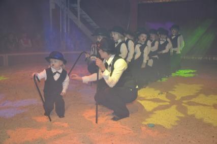 2010-02-11_zirkus-20tonelli-2090.jpg